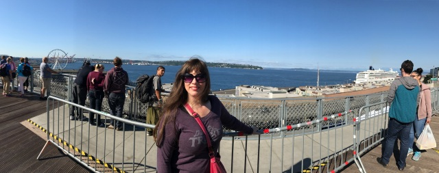 Puget Sound panoramic view with Rachel